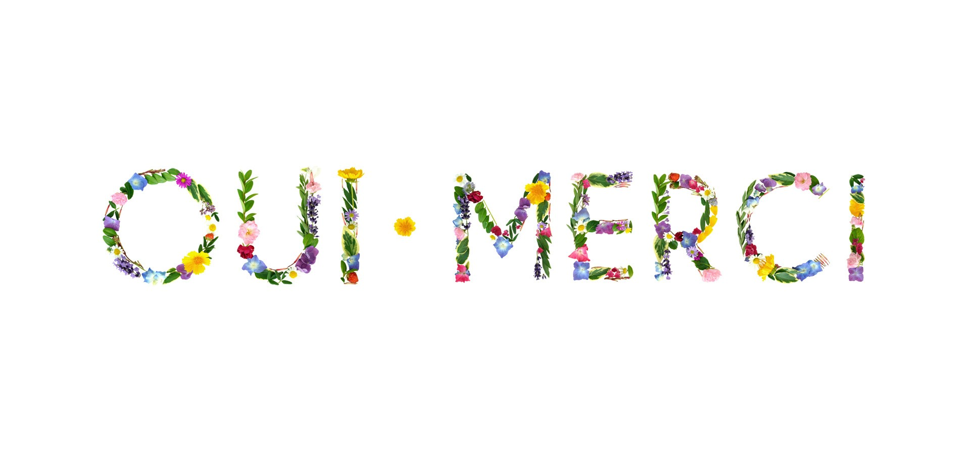 OUI • MERCI