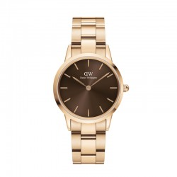 Iconic Link Amber 32 RG Brown